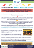 Autumn Leaves: Blocked Drains and Flooding