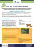 Leaky Woody Dams – Natural Flood Management