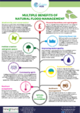 Multiple Benefits of Natural Flood Management (NFM)