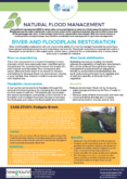 River and Floodplain Restoration – Natural Flood Management