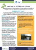 Tree Planting – Natural Flood Management