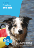 Blue Cross – Flooding and pets
