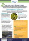 Moorland Restoration – Natural Flood Management