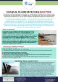 Groynes – Coastal Flood Defences