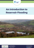 An Introduction to Reservoir Flooding