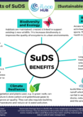 Multiple Benefits of Sustainable Drainage Systems (SuDS)
